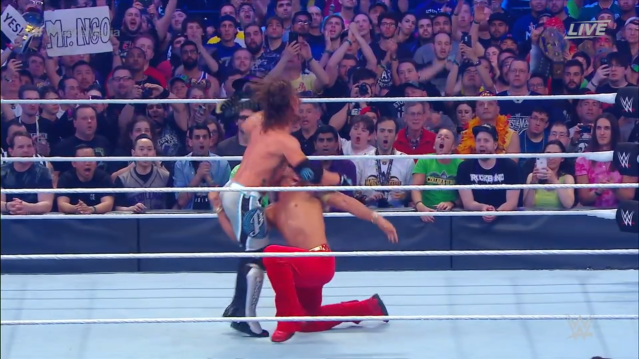 Wrestlemania - 21.png